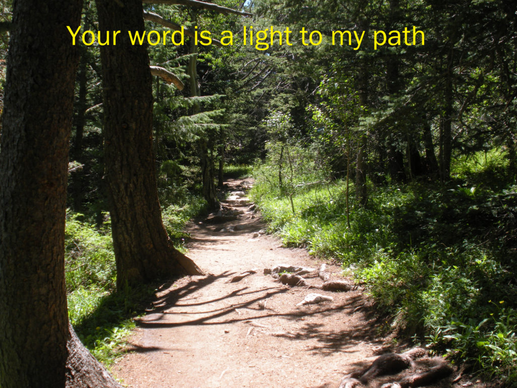Your Word is a lamp to my feet . . .