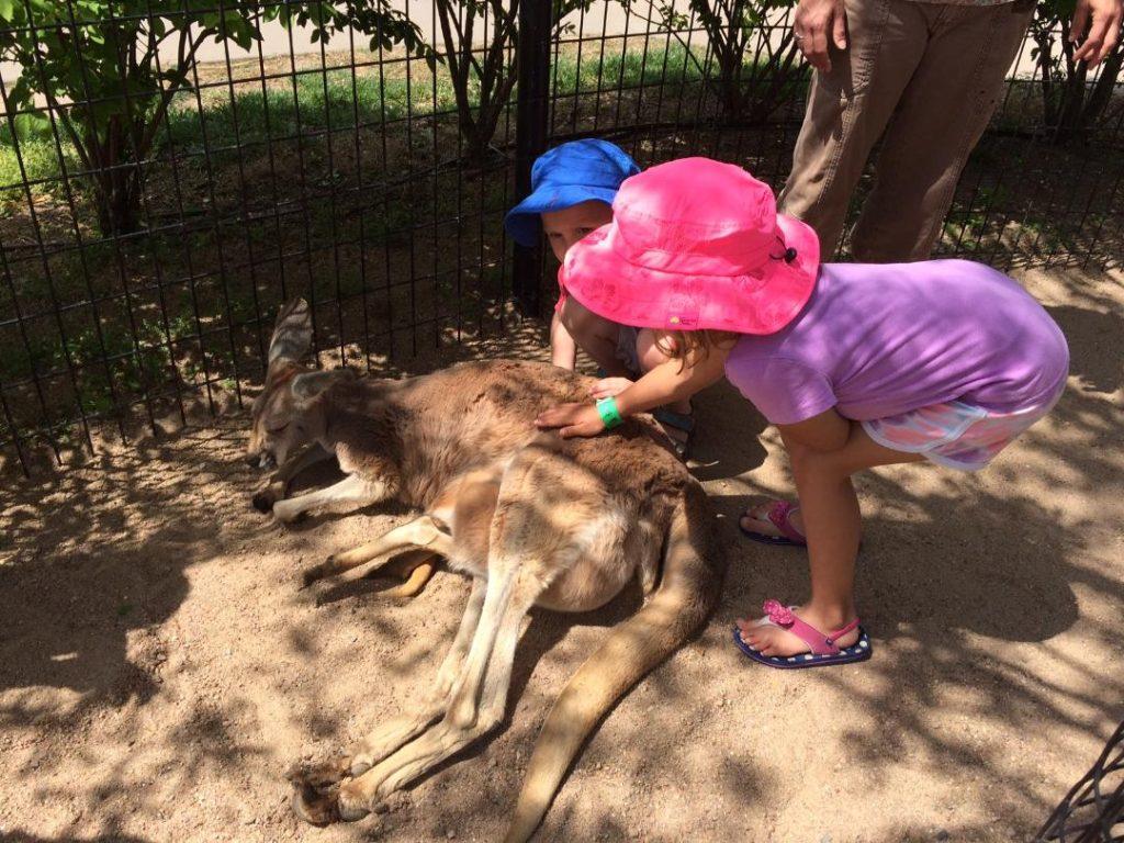 Tanganyika Wildlife Park – Labor of Love