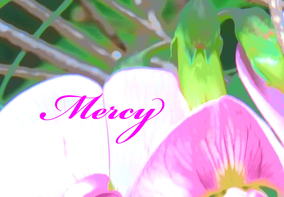 Mercy in a Children's Book